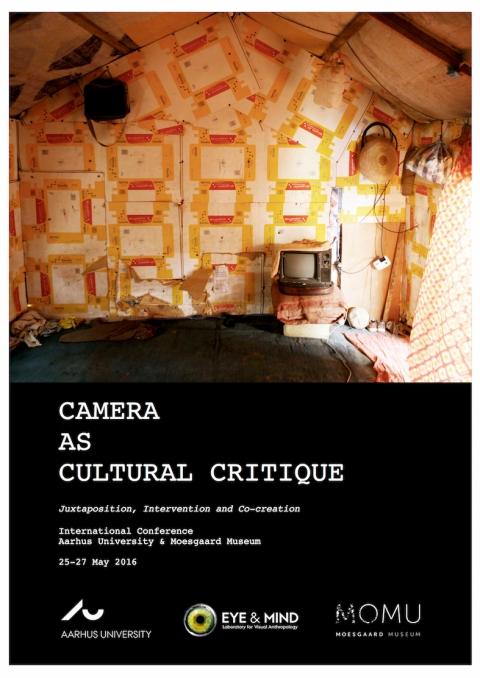 CameraasCulturalCritique